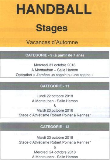 programme -9 -11 -13 automne